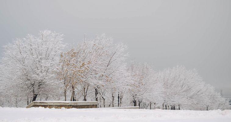 Зима не сдается