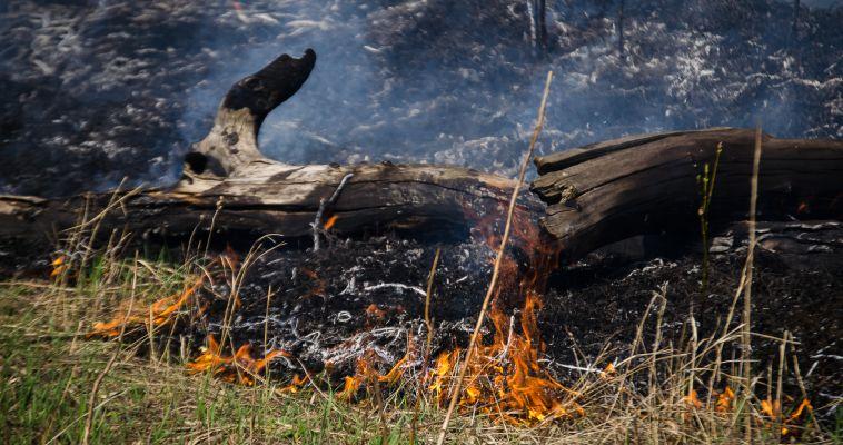Во время пожара в садовом домике погиб мужчина