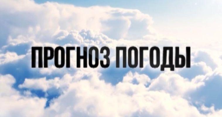 ПРОГНОЗ ПОГОДЫ (13.08)