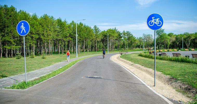 В Магнитогорске от клещей вновь обработают парки и пляжи