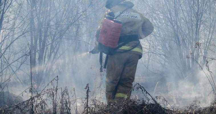 В лесах возможны пожары