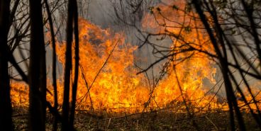 В Магнитогорске горела трава