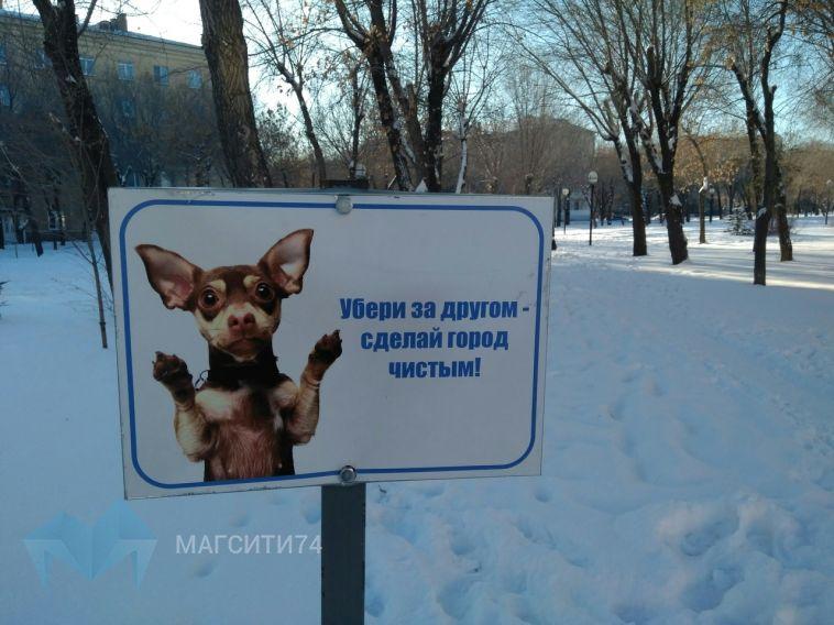 В парках города появились новые таблички для владельцев собак