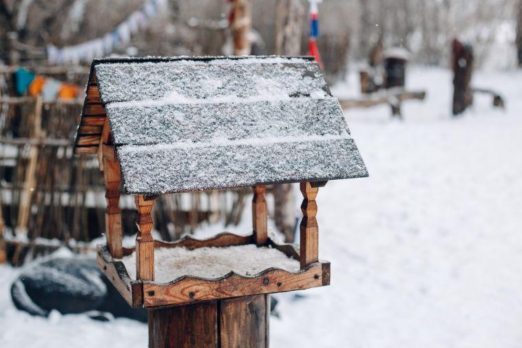Магнитогорцев приглашают к участию во всероссийском конкурсе