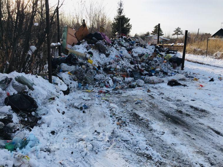 В СНТ «Метизник» зимующие садоводы стали заложниками мусорного коллапса