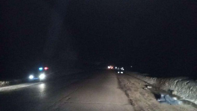 По дороге в Магнитогорск водитель насмерть сбил мужчину