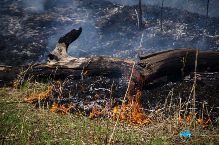 ВМагнитогорске горят сады