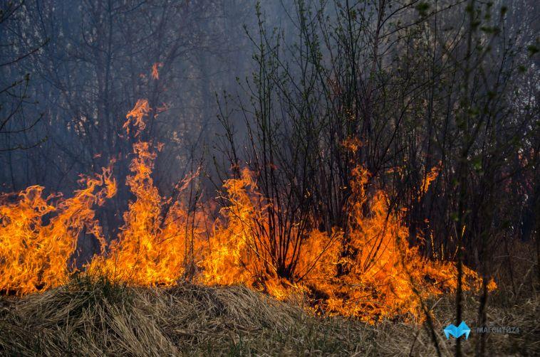 Челябинской области угрожают лесные пожары