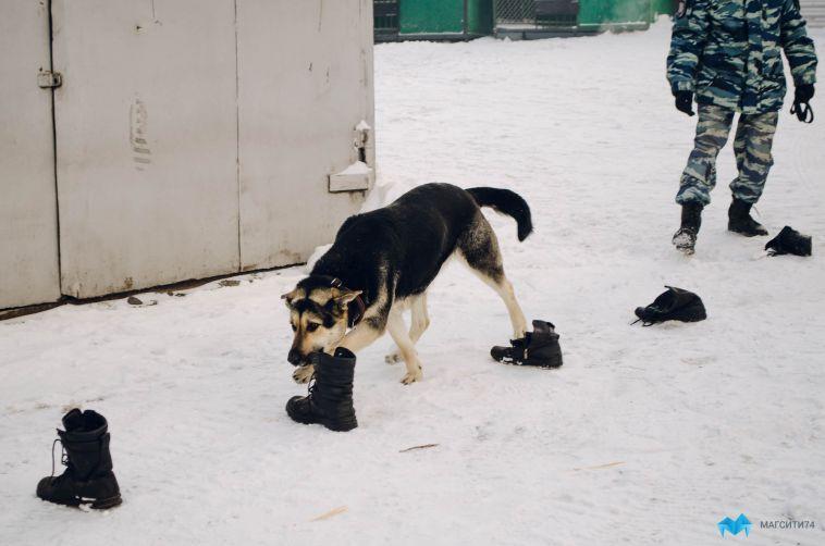 В Магнитогорске полицейские накрыли семейный наркобизнес