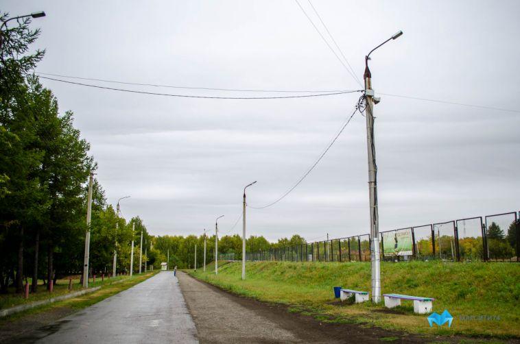 Александр Иванов: «На 50 гектарах леса в Экопарке нам есть чем заняться»