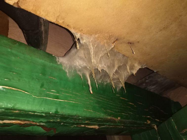 ВМагнитогорске продолжается ремонт пострадавшего после пожара дома наПионерской