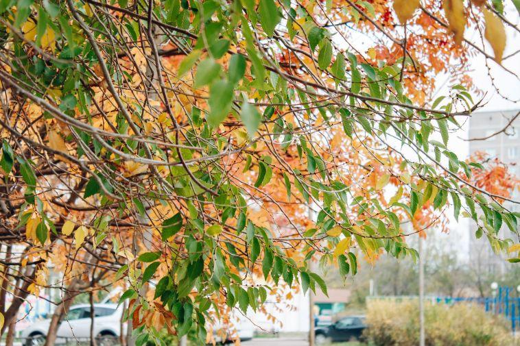 Доставайте теплые вещи— выходные теплыми небудут