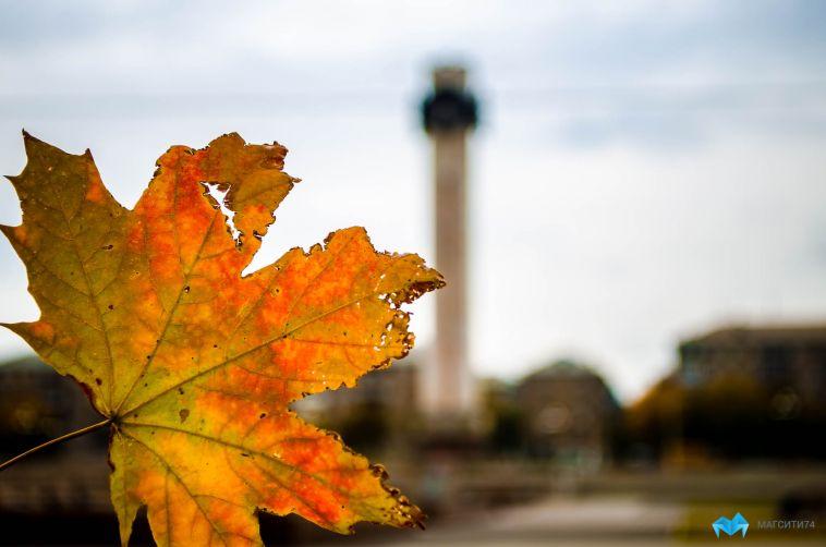 Тест: знаете ли вы эти интересные факты про осень?